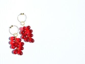 <Spica~光の実~>ガラスイヤリング◎レッド/red/赤の画像