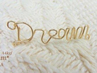 Dream 14kgfピアスの画像