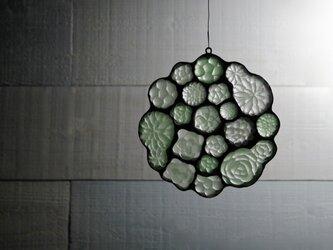 ガラスのスワッグ[多肉植物ガーデン]Mの画像