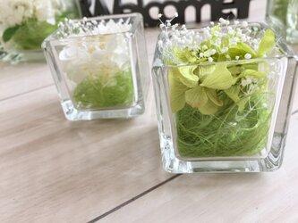 glass cube hydrangeaの画像