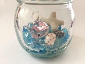 【今月の目玉商品】♪クジラと海♪の画像