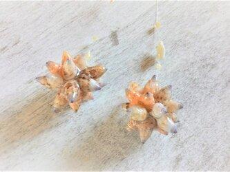 サージカルステンレス☆小さな巻貝玉のロングピアスの画像