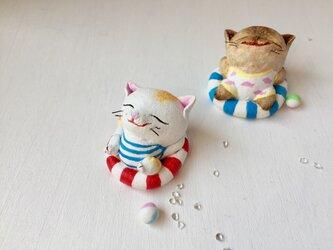 浮き輪猫さん〜茶トラ×白〜の画像