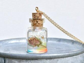 小さなバラ標本ネックレス【永遠】16kgpの画像