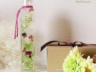 【送料無料】 ハーバリウム涼しい夏の贈り物 ローズの画像