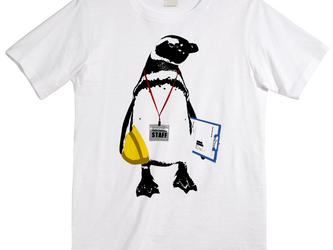 [Tシャツ] STAFF Penguinの画像