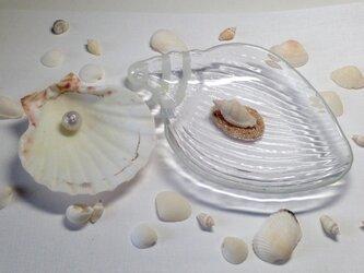 ガラスの小物入れトレー&貝殻の画像