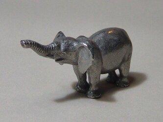 象(鼻上げ)の画像