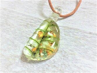 箔入り☆苔の標本ネックレスの画像
