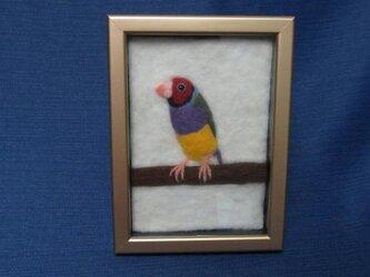 羊毛フェルト 半立体絵 コキンチョウの画像