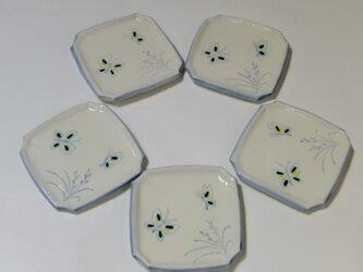 角皿 蝶の画像
