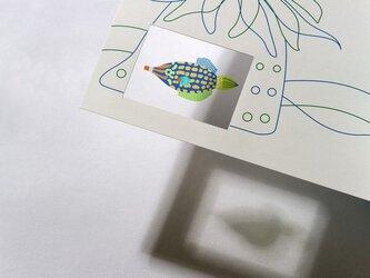 シースルーカード 選べる2枚セット ⓭てんぐかわはぎの画像
