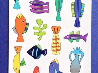 ポストカード4枚セット⑯「17fishes」の画像