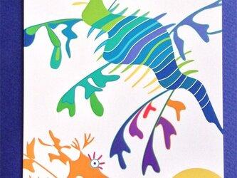 ポストカード4枚セット⑦「リーフィーシードラゴン」の画像