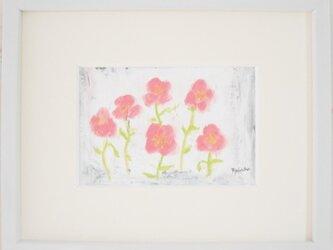 Flower064の画像