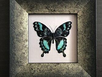 刺繍額  蝶の画像