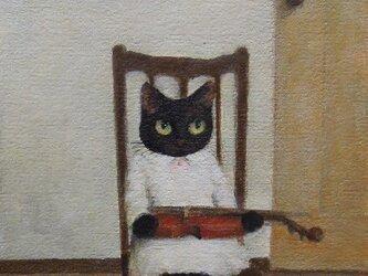 バイオリン・黒ねこ・白いワンピース(NK様売約済)の画像