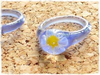 花のリングの画像