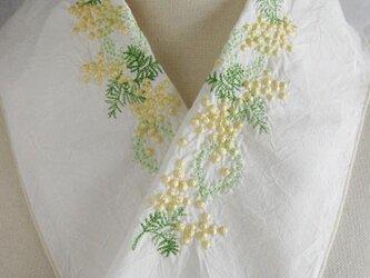 半衿・刺繍半衿・ミモザ(ハンドワッシャー)の画像