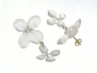 葉脈アジサイの花つなぎピアス【オフホワイト】・14kgf《イヤリングに交換可》の画像