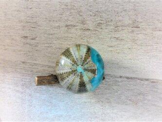 蓄光☆海の詰まったウニの標本ピンブローチの画像