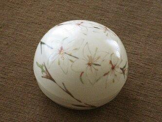 色絵金彩丸蓋物 白蝶草の画像