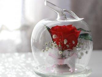 ■ボトルフラワー・アップル バラ(赤)■の画像