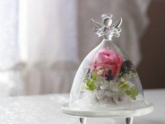 ■ボトルフラワー エンジェル バラ(ピンク)■の画像