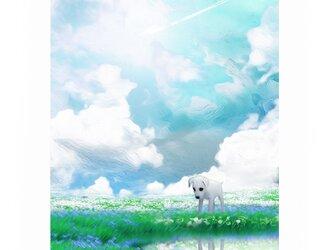 飛行機雲【A4サイズ】の画像