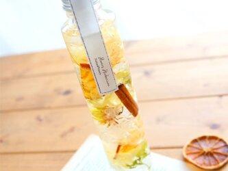 ハーバリウム *柑橘- Citrus-の画像