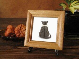 猫 気になる・・キジトラ白ちゃんの画像