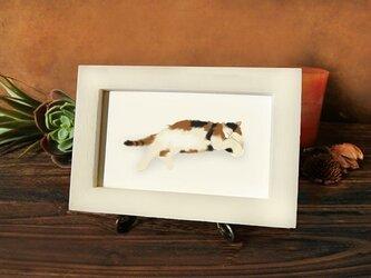 猫 *スヤスヤ*・・ミケの画像