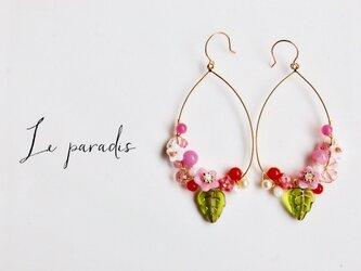 hoop flower-pink-の画像