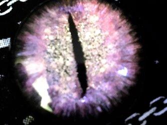 GALAXY eye (薄紫色)の画像