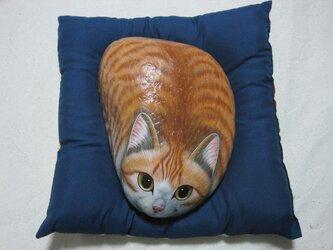 石猫 「こてつ」の画像