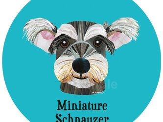 ミニチュア・シュナウザー2《犬種名ステッカー/小型犬》の画像