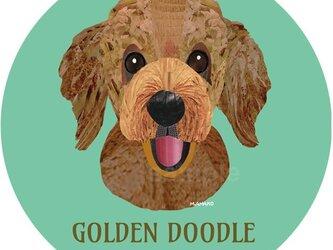 ゴールデン・ドゥードゥル《犬種名ステッカー/大型犬》の画像