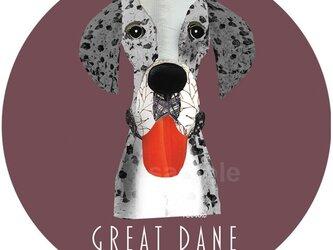 グレートデン/ブルーマール《犬種名ステッカー/大型犬》の画像
