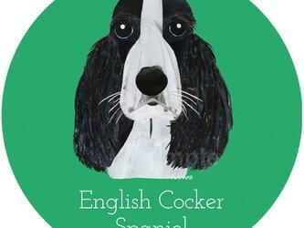 イングリッシュ・コッカー・スパニエル(白黒)《犬種名ステッカー/小型犬》の画像