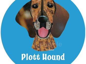 プロット・ハウンド《犬種名ステッカー/大型犬》の画像