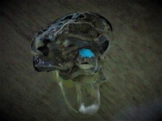 蓄光☆ギーガー的な貝の標本指輪(A)の画像