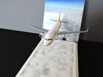 高度1万メートル(A320)の画像