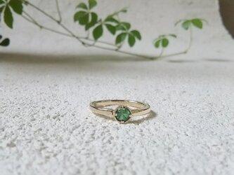 緑の風〈ダイヤカット〉の画像