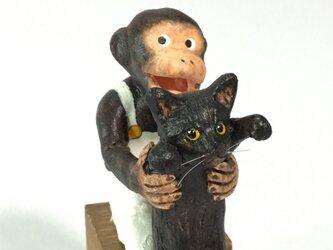 monkey party チンパンジー黒猫の画像