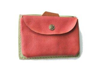pass card case ピンク×白緑の画像