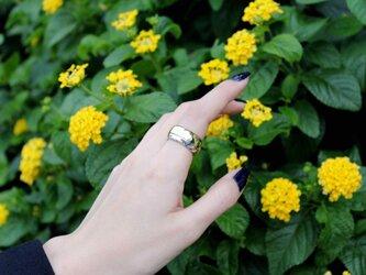 mh ringの画像