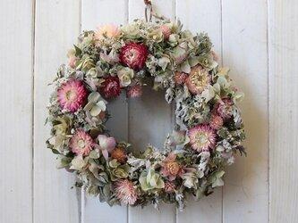 SALEピンクの小花とオレガノのリースの画像