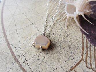 タカセ貝 シルバーネックレスの画像