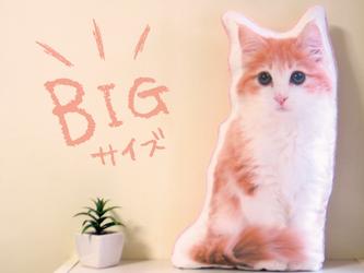 ビッグサイズ 犬 猫 ペット 動物 フレブル クッション ぬいぐるみ メモリアル プレゼント オーダーメイド 写真 名前の画像