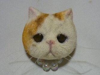 いつでも一緒猫さんブローチ エキゾチックショートヘアの画像